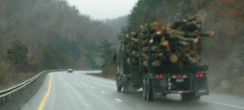 Trees on truck